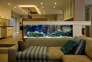 acvariu, 40 de idei pentru cum să integrezi un acvariu în decorul casei tale