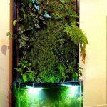 grădini în interiorul casei, 25 de idei uimitoare pentru grădini în interiorul casei