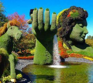 grădini botanice