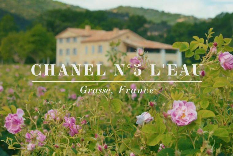 flori Chanel