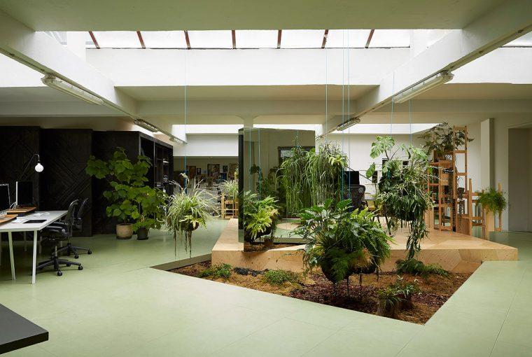 grădini în interiorul casei